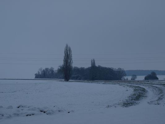 2009 sous la neige