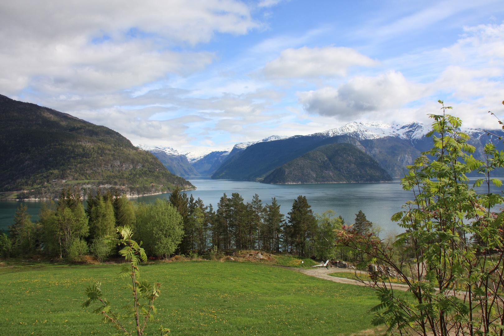 2010 05 18 - Blick auf den Hardangerfjord