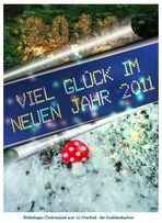 2010 abgehakt - VIEL GLÜCK in 2011