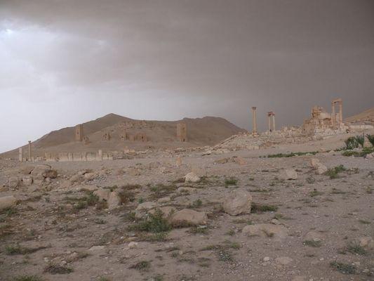 20107 Palmyra 1