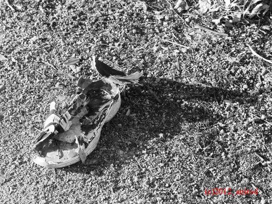 2012_KW8_Der zerlaufene Schuh