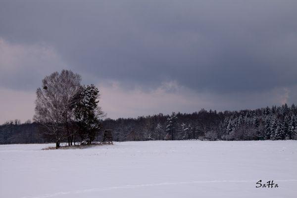 2013 -Kalendarischer Frühling