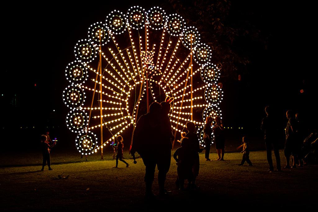 201308 Karlsruhe - Lichterfest 2