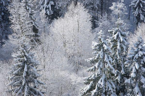 2016 Allgäu 2