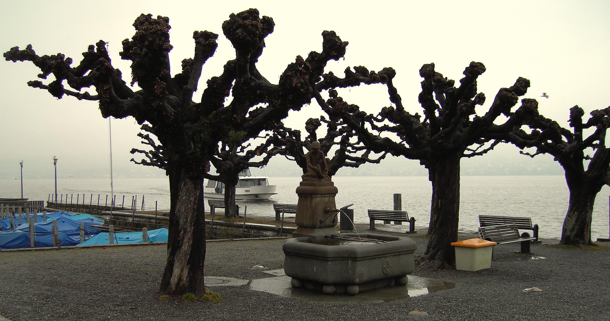 21.02.2011..Ein grauer Tag / Un dia gris / Un jour gris....01a