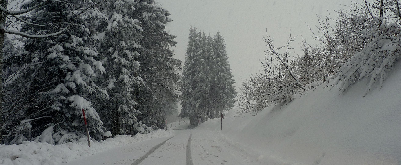 21.02.2011..Ein grauer Tag / Un dia gris / Un jour gris....07
