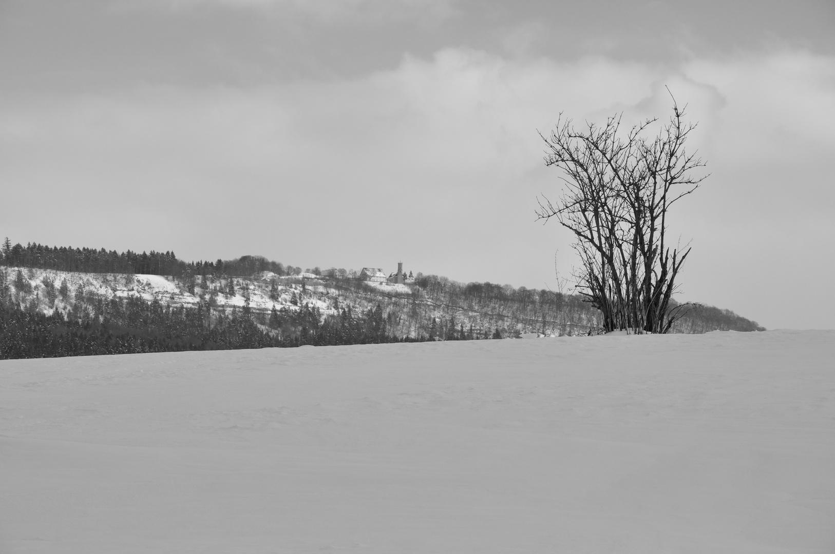 21.02.2013 - Grau -