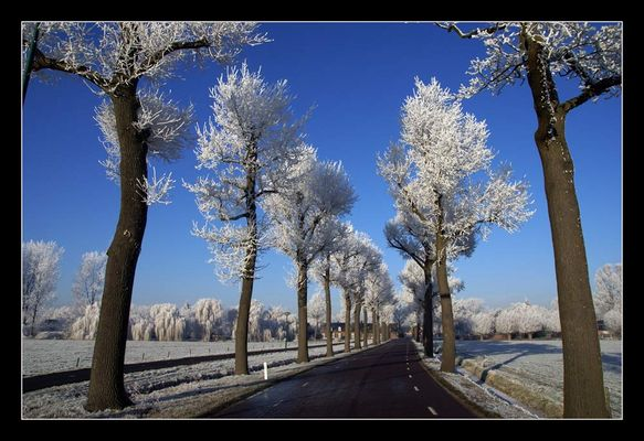 22-12-2007, Winterallee