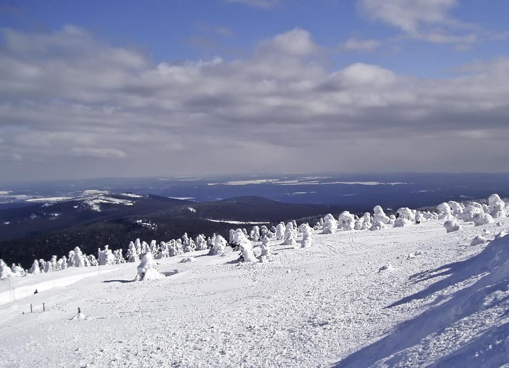 (22)  Winterspaziergang ...