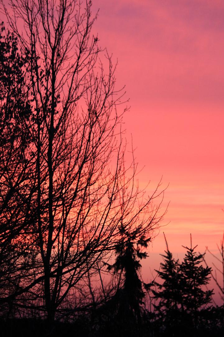 23.2.11 7:20 Uhr Morgensonne über Niederkrüchten