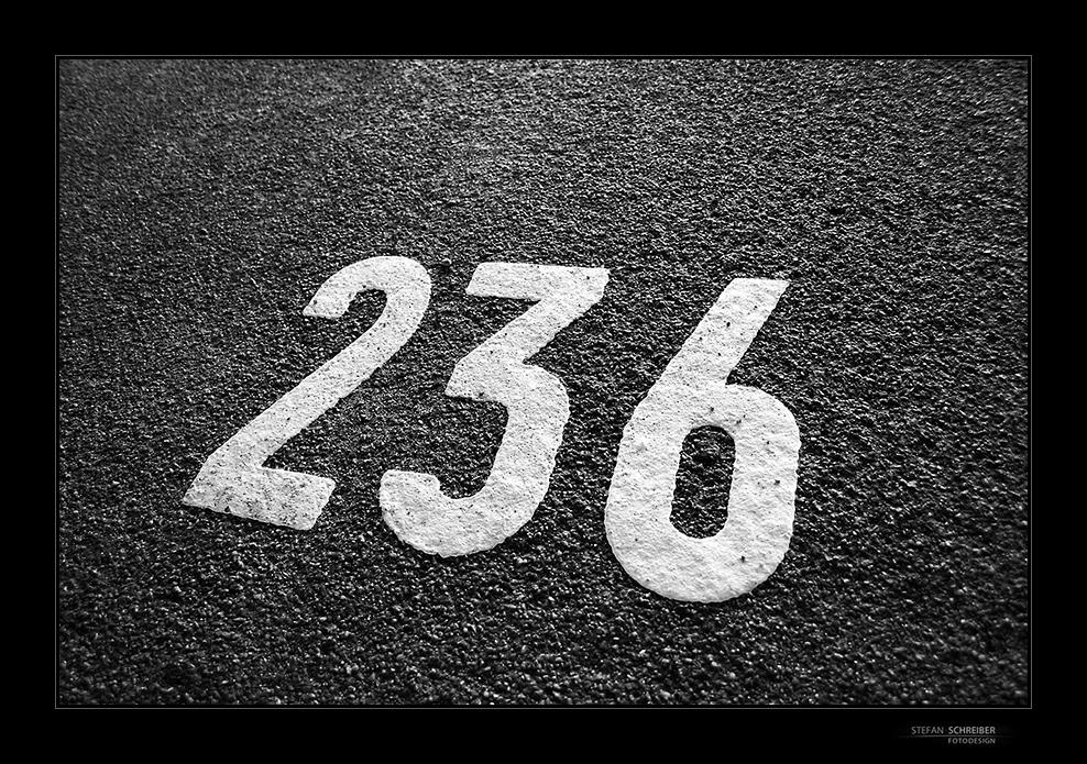 [ 236 ]