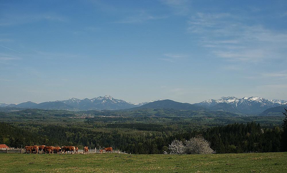 """25.04.09 - """"Feel the Alps..."""" - zu Füßen der Bergwelt"""