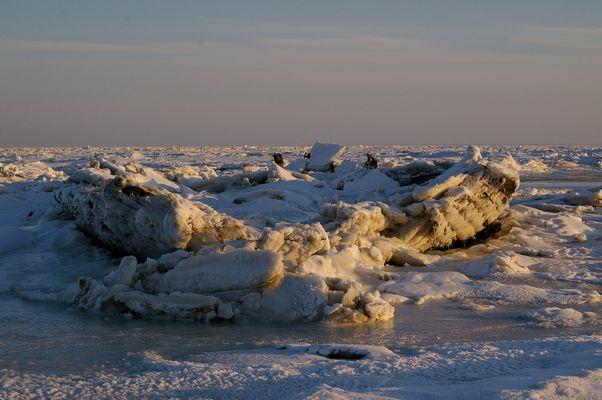 25.12.2010 Polarexpedition