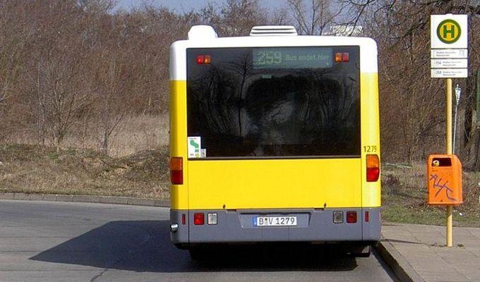 259 Bus endet hier...