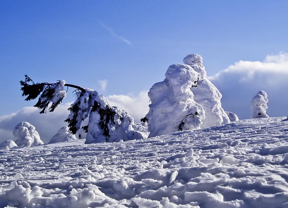 (26) Winterspaziergang...
