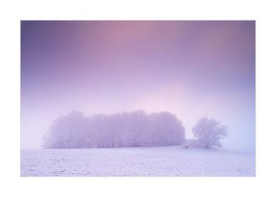 01/07 Winternebel