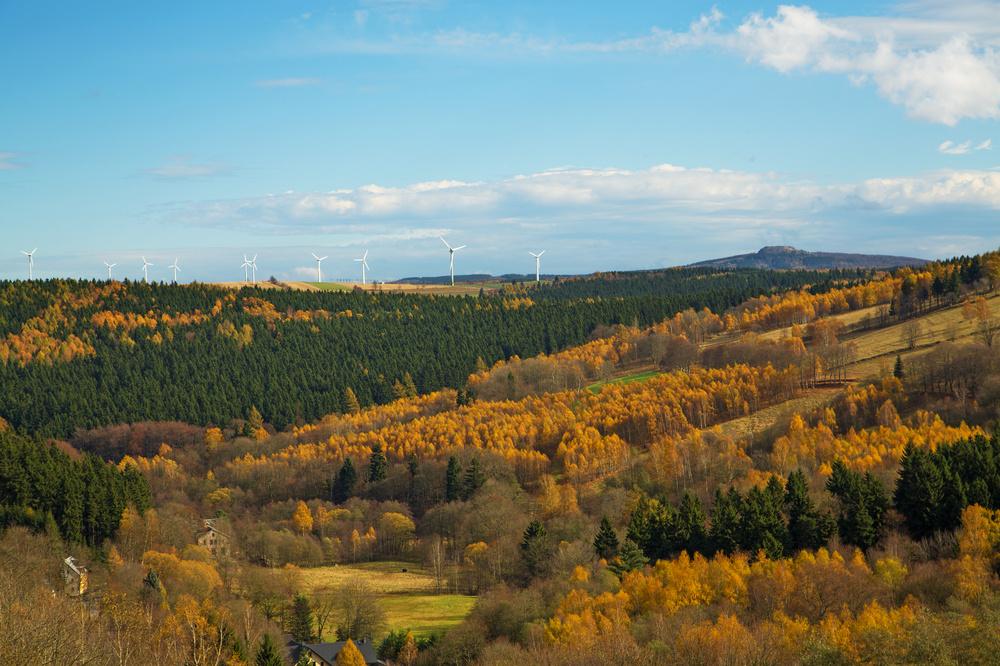 ***27.10.13 Die letzten bunten Wälder***