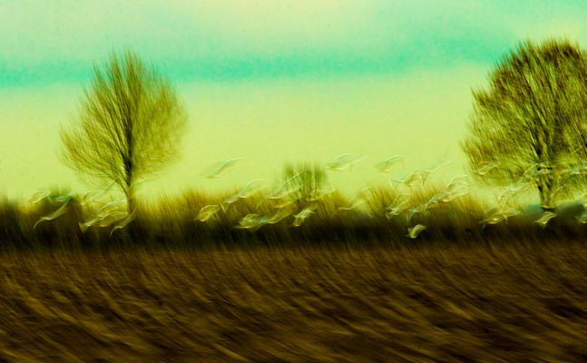 27.11.2010 17:03 1/8 sek