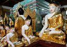 28 Buddhas