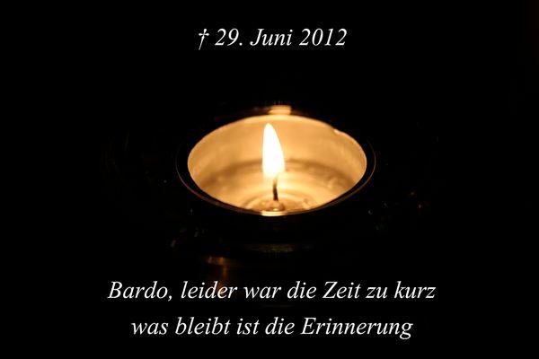 † 29.06.2012