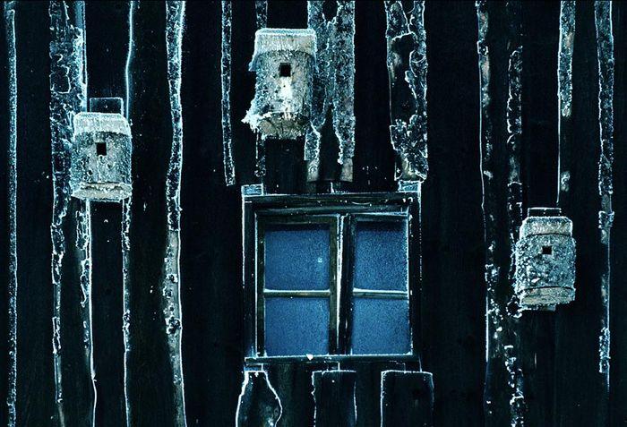 3 Vogelhäuser im Winter