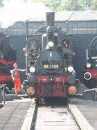 30 Jahre DGEG in Bochum-Dahlhausen