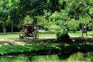 L'été au parc (4) von JeanPierre