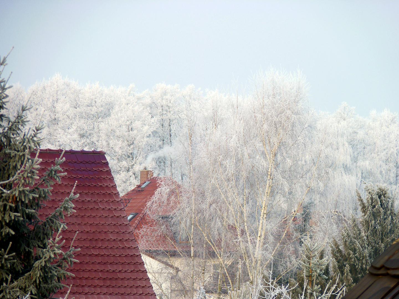 31. Januar - ein schöner Rauhreifmorgen
