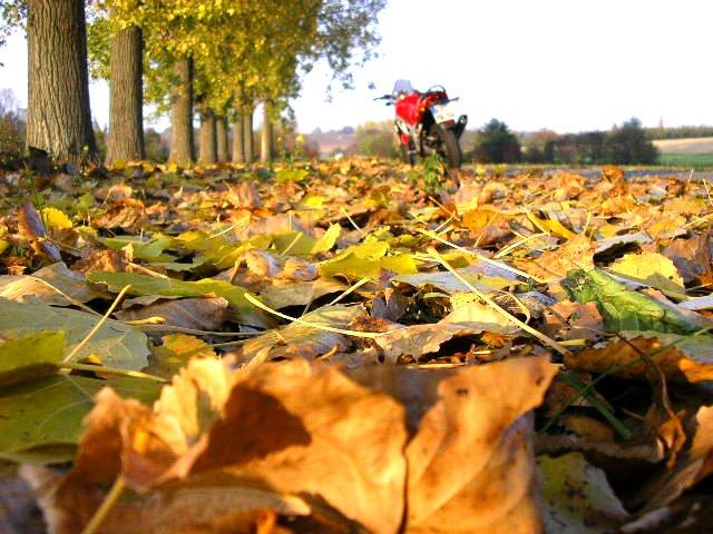 31. Oktober - die Saison ist vorbei!