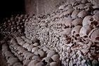 318 skulls