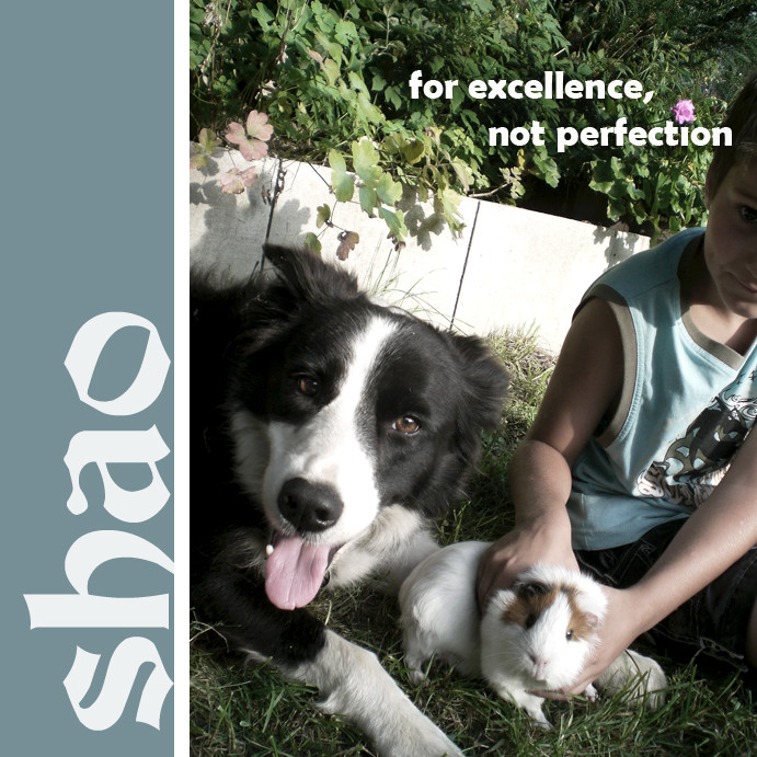 [ 邵 ] - for excellence, not perfection