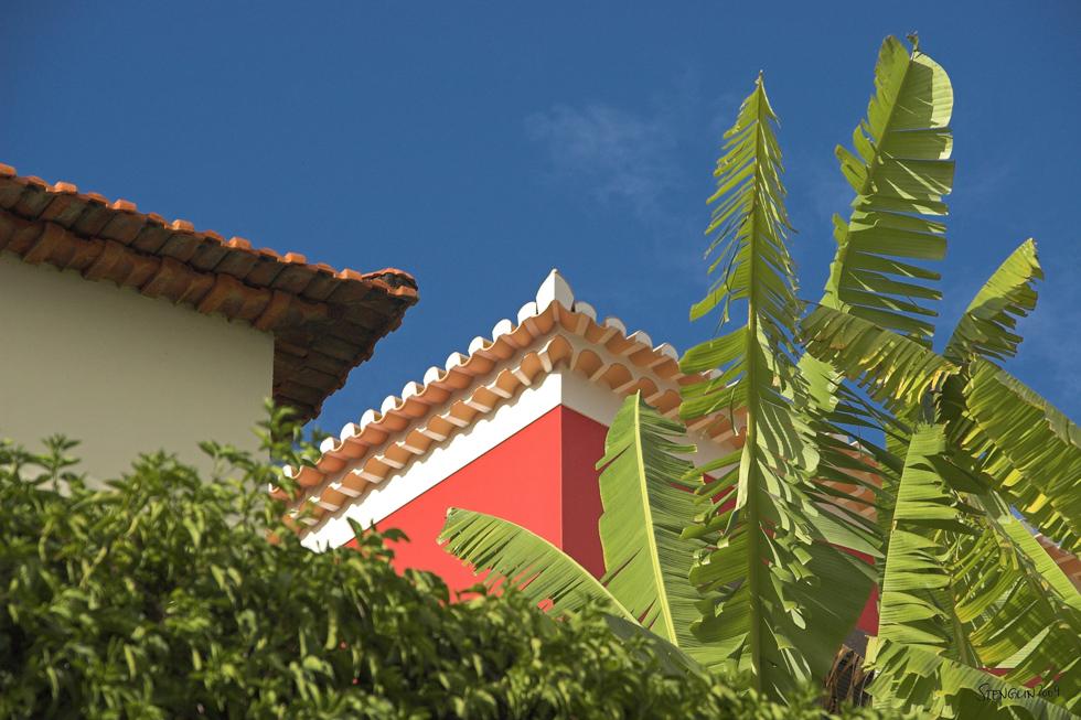 38-09 Madeira - Insel der Farben #7