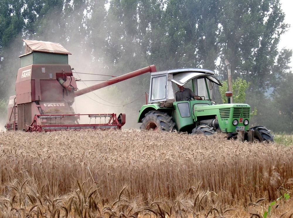 -38 Jahre und noch immer im Ernteeinsatz-