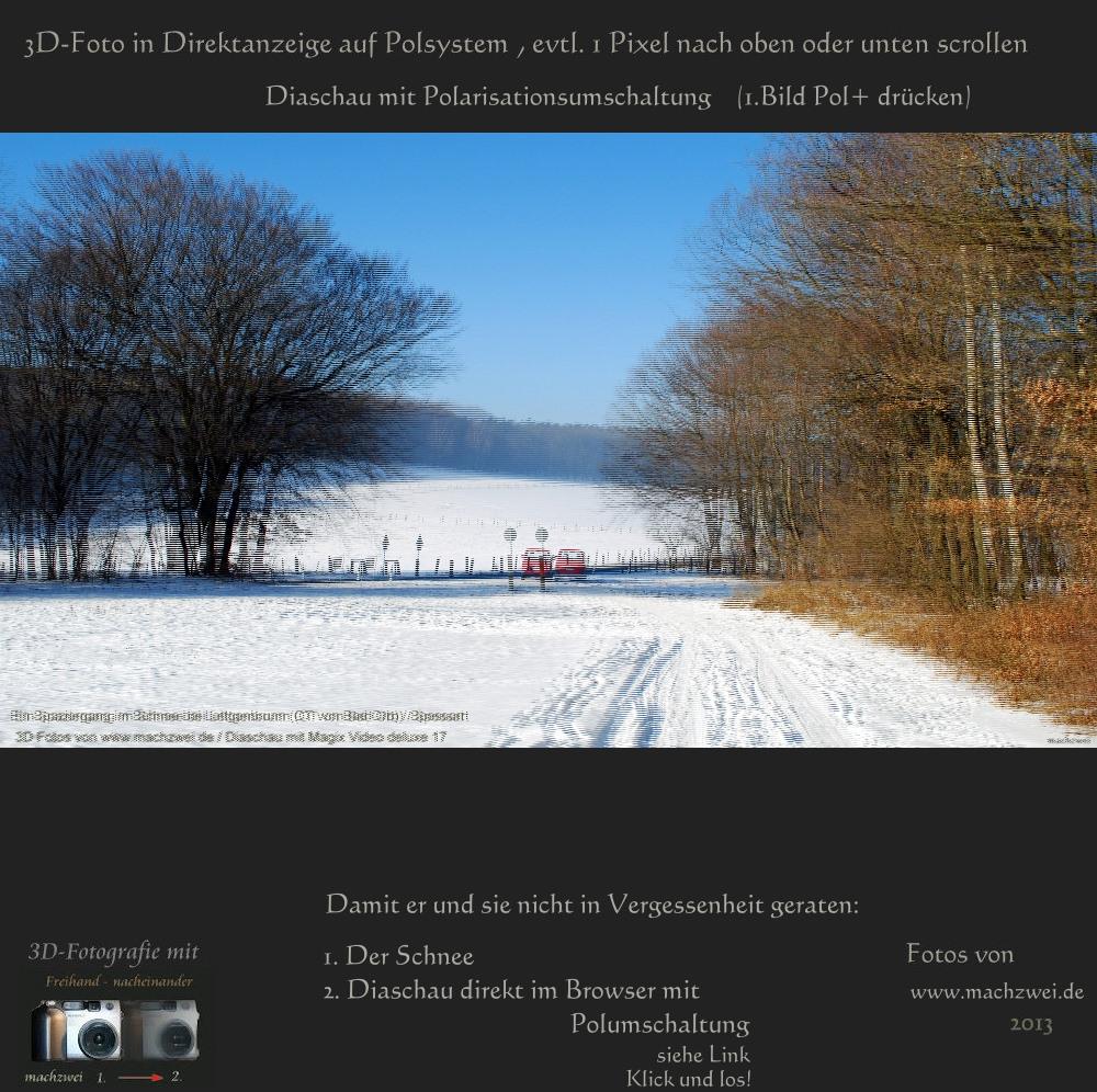 3D direkt: Diaschau vom Schnee