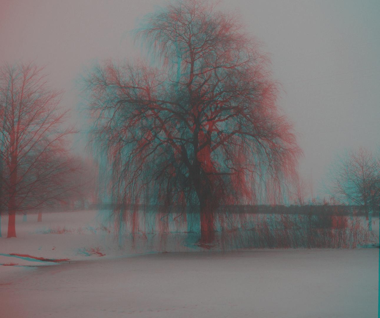 3D  Nebel am Weiher 1.1.11