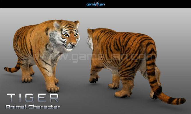 3d tiger animal character modeling
