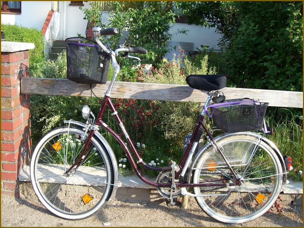 3FS - Fahrradsammlung, 3. Rad