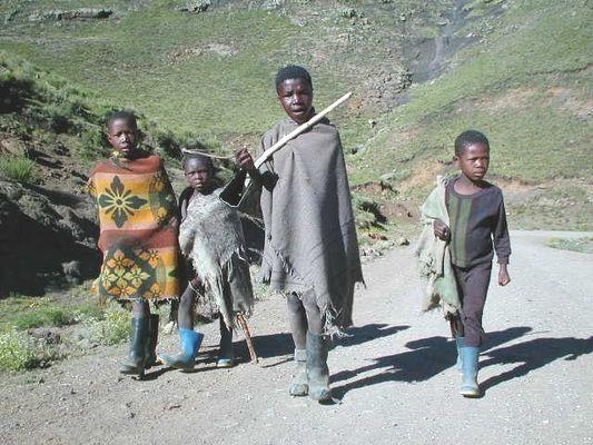 4 Hirtenjungen auf der Mountainroad