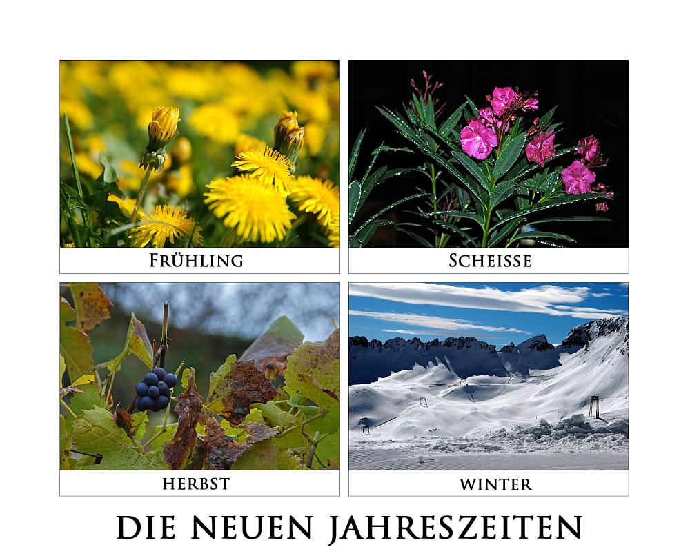4 jahreszeiten foto bild jahreszeiten collagen natur for Garten 4 jahreszeiten