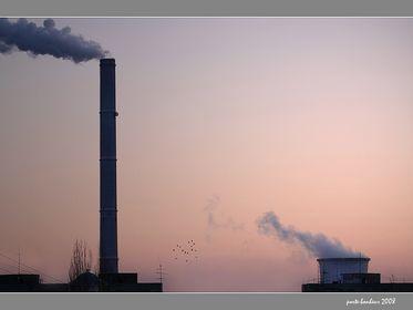 Industry & landscape
