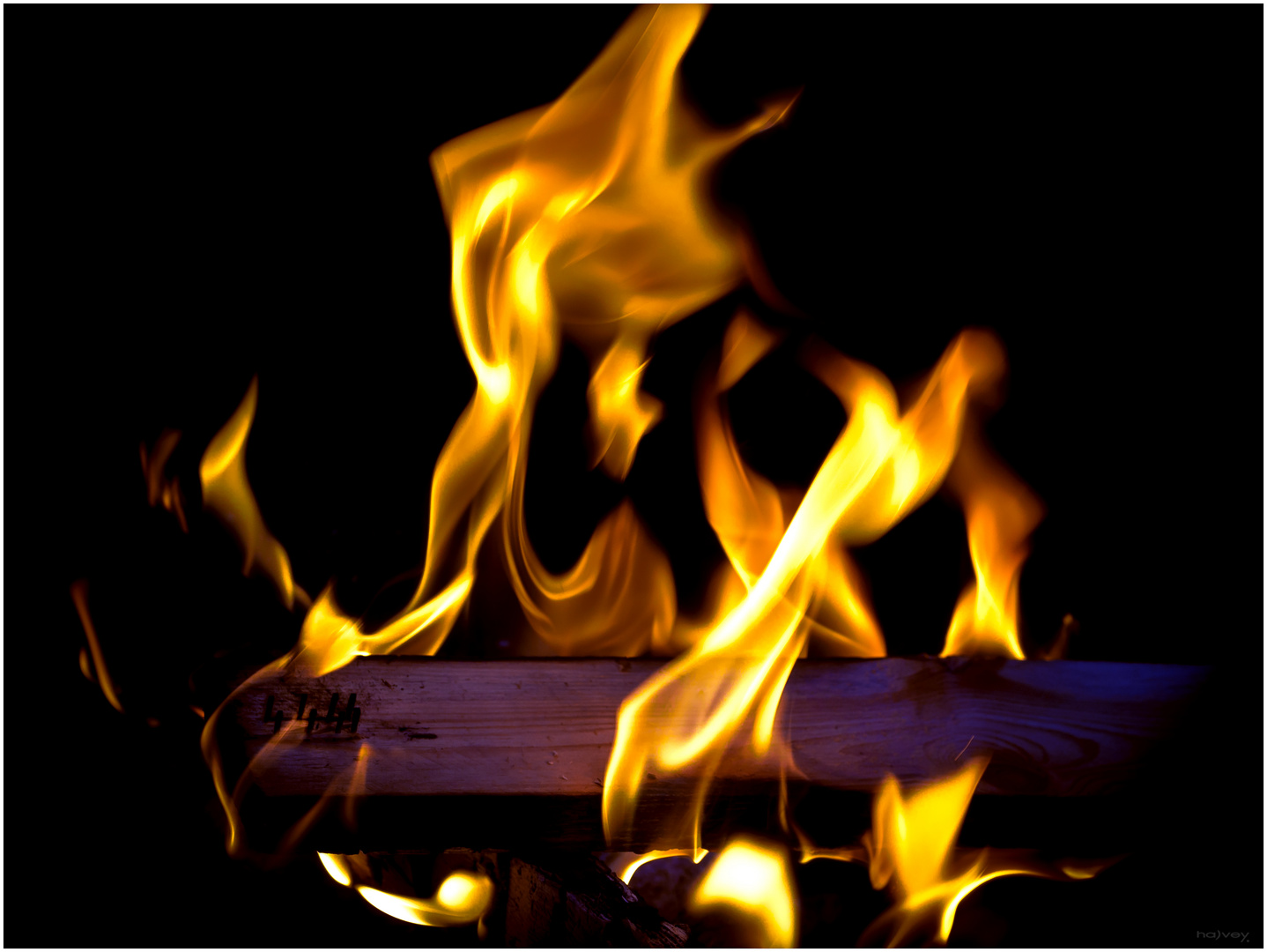 4444 FireMonster