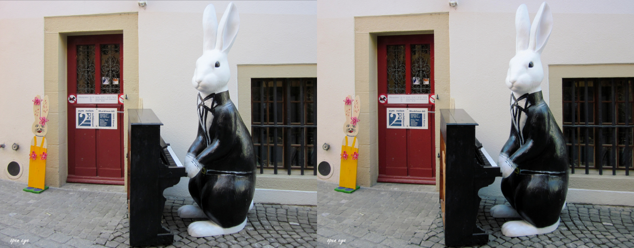 5. _ Osterhase in Aarau / Kt. AG / Schweiz _ X View _