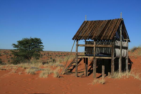 5-Sterne-Lodge in der Kalahari