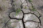 5 Wochen Trockenheit
