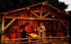 Impressionen auf dem Ulmer Weihnachtsmarkt 1 by SINA