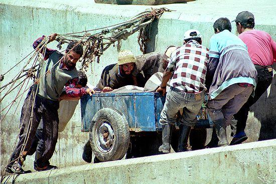 DER ERSTE UPLOAD IN DIE FOTOCOMMUNITY: Wagenschieber in Marokko