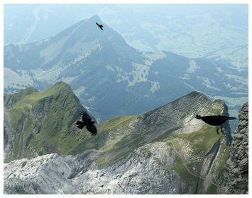 Nord-Süd Schweiz