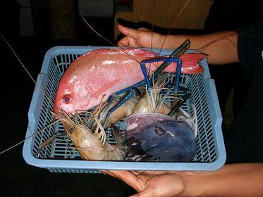 Fische & Meeresfrüchte