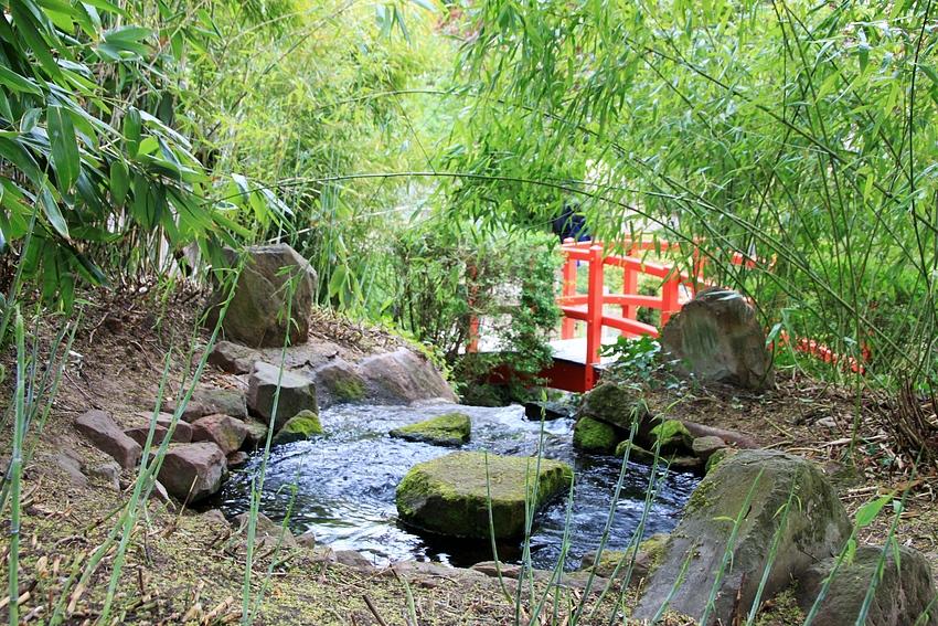6 - Japanischer Garten