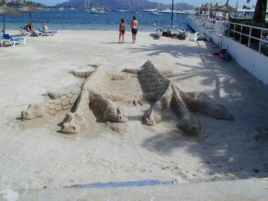 ....6 Krokodile oder so etwas Ähnliches gibt es nicht in Port de Pollenca....